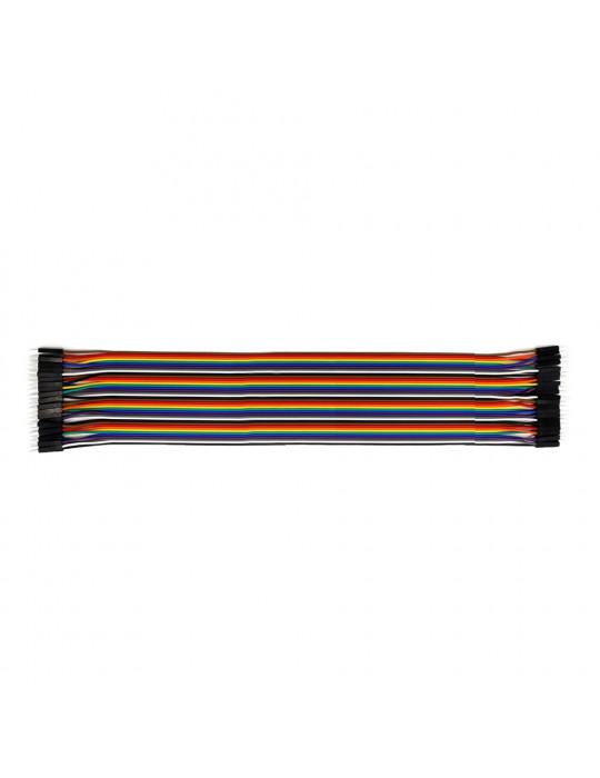 Connectiques / Câblages - Rallonge de câble GPIO Mâle / Mâle - 30 cm - 1