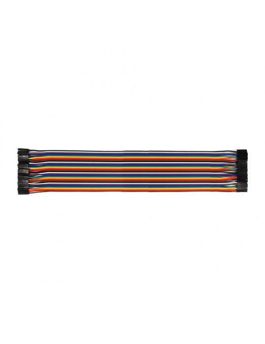 Connectiques / Câblages - Rallonge de câble GPIO femelle / femelle - 30 cm - 1