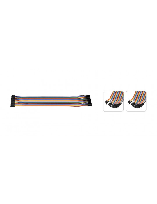 Connectiques / Câblages - Rallonge de câble GPIO femelle / femelle - 30 cm - 2