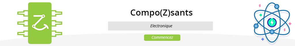 Compo(Z)sants
