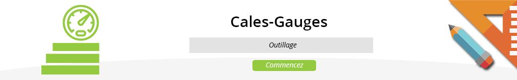 Gauges / Cales